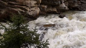 Stream with waterfall stock footage
