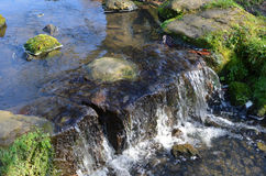 Stream with waterfall. Royalty Free Stock Image