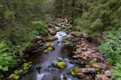 Stream with white water at fulufjallet nature reserve. In sweden royalty free stock photography