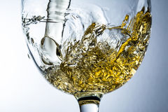 Stream of white wine pouring into a glass Royalty Free Stock Photo