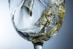 Stream of wine pouring into a glass, white wine splash on grey background Royalty Free Stock Photography