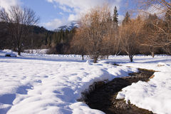 Stream in winter. Royalty Free Stock Images