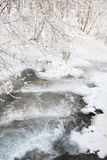 Stream in winter forest Stock Images