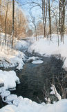 Stream in winter forest Royalty Free Stock Images