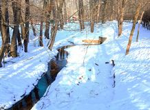 Stream winter  in the forest. Royalty Free Stock Photo