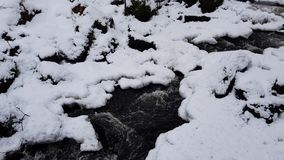 Stream in wintry forest stock footage