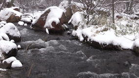Stream in Wintry Landscape stock video