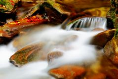 Stream With Soft Water Stock Images