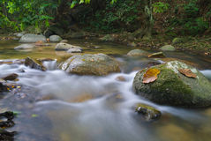 A stream Royalty Free Stock Photography