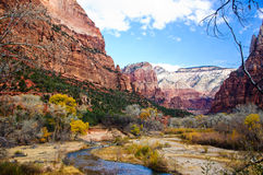 Stream in Zion National Park Stock Photo