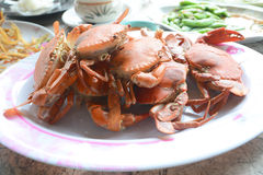 Streamed crab Stock Photos