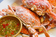 Streamed Crabs with sour and spicy sauce Royalty Free Stock Photos