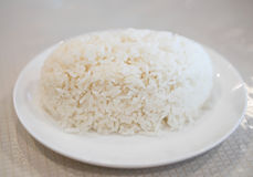 Streamed rice. On the white plate Stock Photography