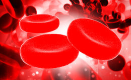 Streaming blood cells Stock Photos