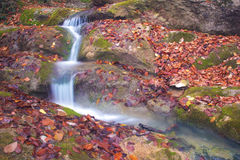 Streaming down. Little waterfall in Crimea mountains in autumn Stock Photography