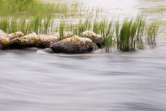 Streaming river with stones and sedge in the background Stock Photo