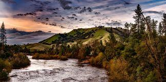 Streaming River Surrounded by Pine Trees Under Cloudy Sky during Daytime Stock Images