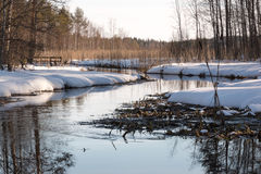 Streaming small river with snowy surroundings in spring Royalty Free Stock Photography