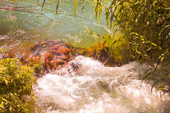 Streaming transparent pure water in sunny national park in Kroatia Royalty Free Stock Image