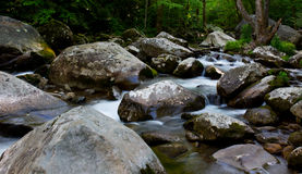 Streaming water in forest. Water rushes through a small river nestled in a eastern united states forest Stock Image