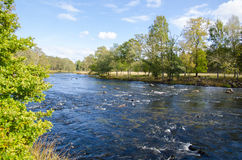 Streaming water in small river Stock Photography