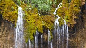 Streaming waterfall flows down a rock covered with moss stock video footage