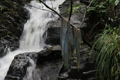 Streaming waters. Pieces of cloth hanging in front of a small waterfall royalty free stock image