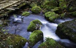 Streamlet和桥梁 库存图片
