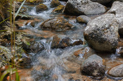 Streamlet Foto de Stock Royalty Free