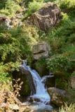 Streamlet in de bergen. Vashisht. Royalty-vrije Stock Afbeelding