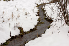 Streamlet in a winter wood Royalty Free Stock Photos