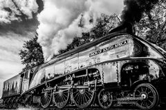 Streamlined Steam Engine. A huge streamlined steam engine Gresley A4 Pacific 60009 Union of South Africa blows huge amounts of smoke and steam into the trees and Stock Image