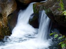 Streams. Within the scenic area in western China Royalty Free Stock Photos