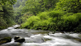 Streams. High mountain stream flow, have a very long history Royalty Free Stock Image