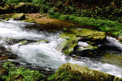 Streams Royalty Free Stock Photography