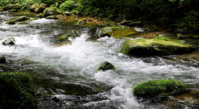 Streams Stock Images