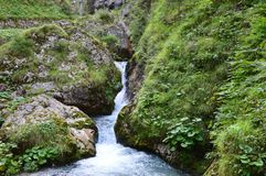Streams and Dolomiti mountains stock photos