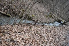 Rolling Streams of Wv after winter run off. The streams, that generally can almost be dry in mid summer, will flow with the winter and spring water run off from stock images