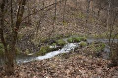 Rolling Streams of Wv after winter run off. The streams, that generally can almost be dry in mid summer, will flow with the winter and spring water run off from stock photography