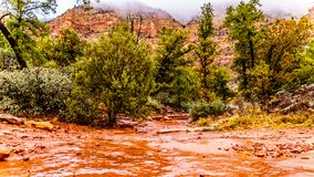 Streams and Puddles on the red sandstone hiking trails near Chimney Rock during heavy rainfall in Sedona. Northern Arizona, United Sates of America royalty free stock photos