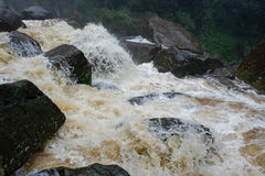 Streams Rapid flow of water. Rapid flow of water In streams From the mountains Royalty Free Stock Photography