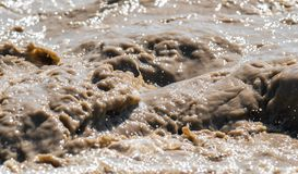 Streams and splashes of dirty water. Close-up background image Stock Photos