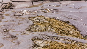 Streams Of Volcanic Mud Flowing Down On The Ground stock footage