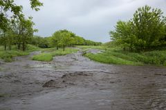 Streams of water flow after a heavy rainfall. Stock Image
