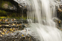 Streams of water waterfall. Streams of water from waterfall in autumn scene Stock Photography