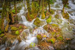 Streams waterfall. Jiuzhaigou in a stream, from the thick bushes, formed a small waterfall, bubbling streams Stock Images