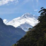 Strebender Berg Stockbilder
