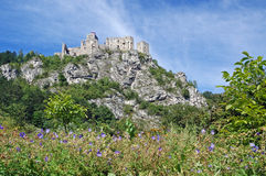 STRECNO CASTLE Royalty Free Stock Photography