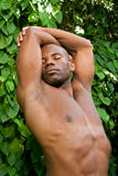 Strecthing em natural Foto de Stock Royalty Free