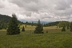 Stredna polana meadow in Chocske vrchy Stock Photo